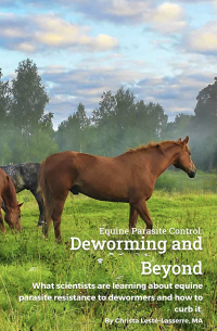 Deworming and Beyond